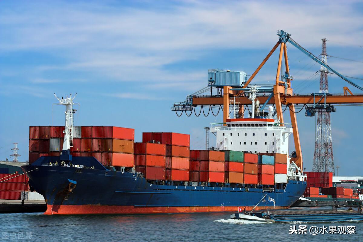 海运图片.jpg